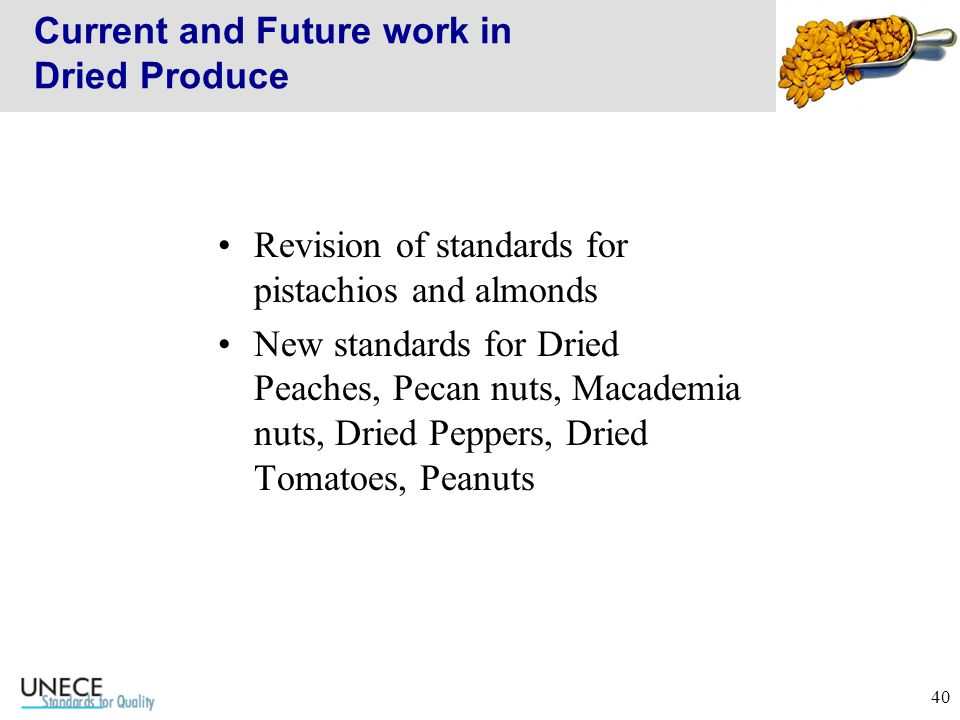 40 Current and Future work in Dried Produce Revision of standards for pistachios and almonds New standards for Dried Peaches, Pecan nuts, Macademia nuts, Dried Peppers, Dried Tomatoes, Peanuts