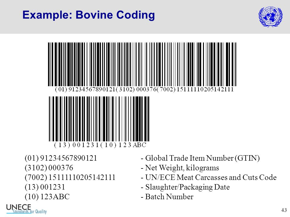 43 Example: Bovine Coding (01) 91234567890121 - Global Trade Item Number (GTIN) (3102) 000376 - Net Weight, kilograms (7002) 15111110205142111- UN/ECE Meat Carcasses and Cuts Code (13) 001231- Slaughter/Packaging Date (10) 123ABC- Batch Number