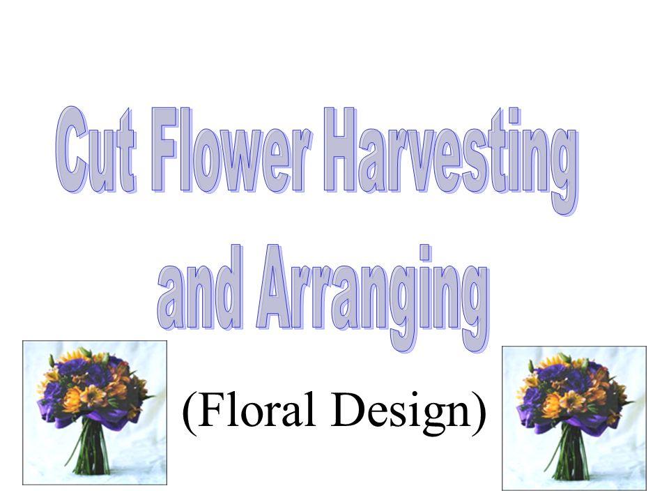 (Floral Design)