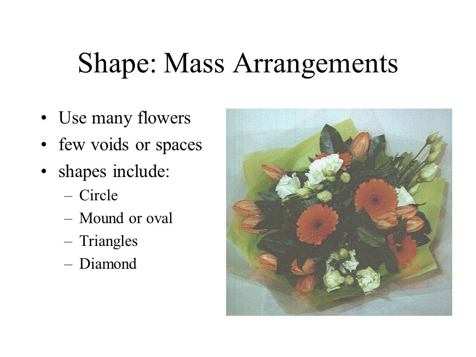 Shape: Mass Arrangements Use many flowers few voids or spaces shapes include: –Circle –Mound or oval –Triangles –Diamond