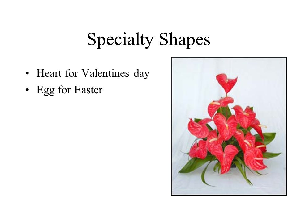 Specialty Shapes Heart for Valentines day Egg for Easter