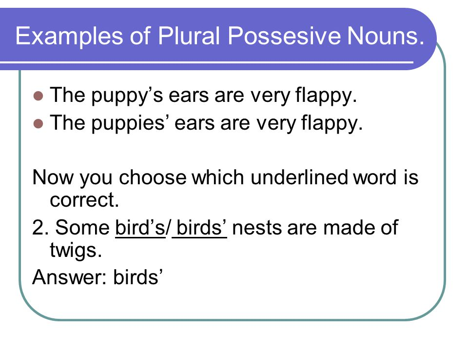 Examples of Plural Possesive Nouns. The puppy's ears are very flappy. The puppies' ears are very flappy. Now you choose which underlined word is corre