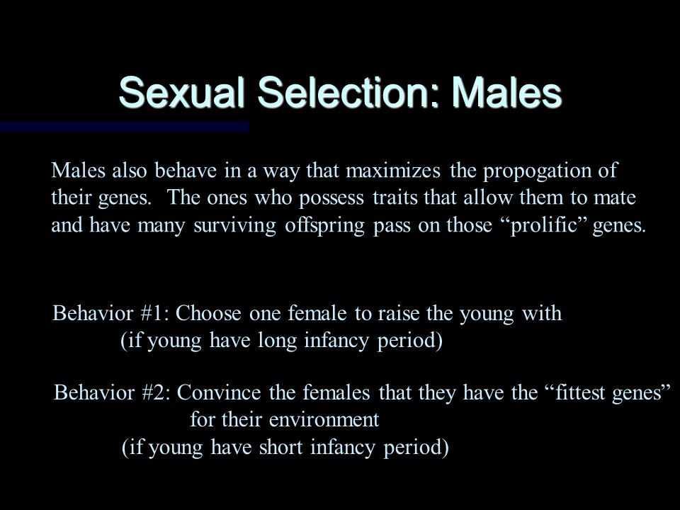 Sexual Selection: Females Females must behave in a way that ensures that their offspring survive and mate, and that they have as many offspring as possible If they behave this way, the genes for this behavior are passed on.