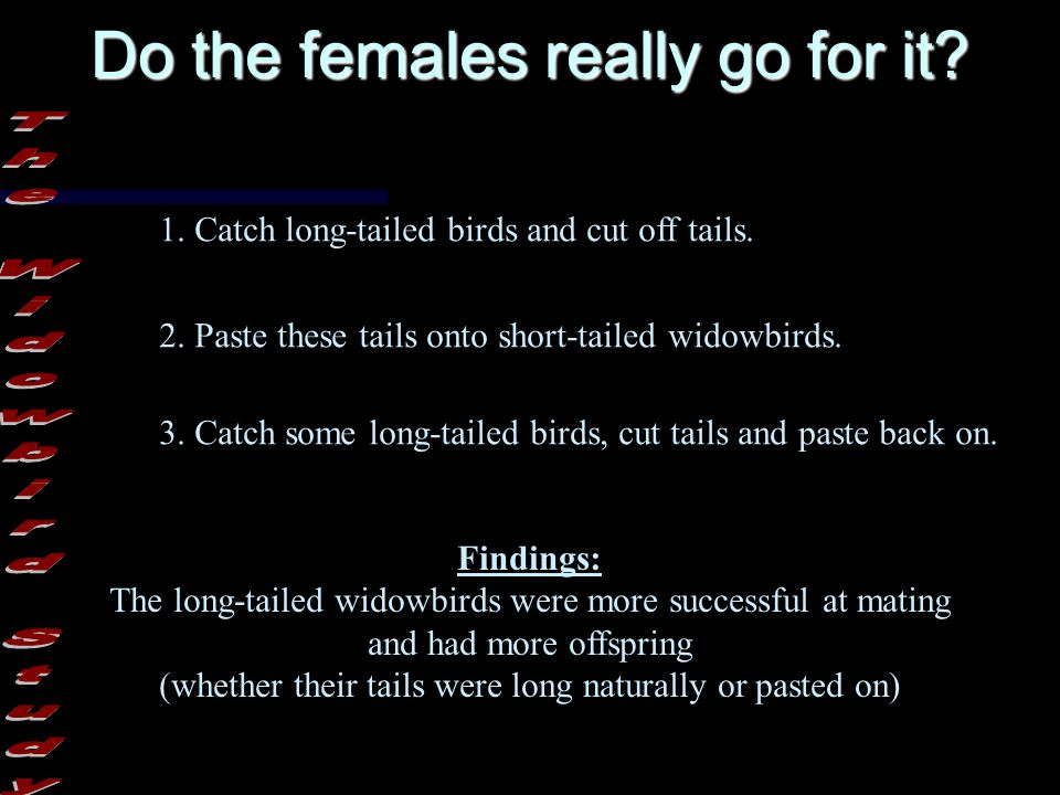 Some of these characteristics allow males to fight each other more effectively.