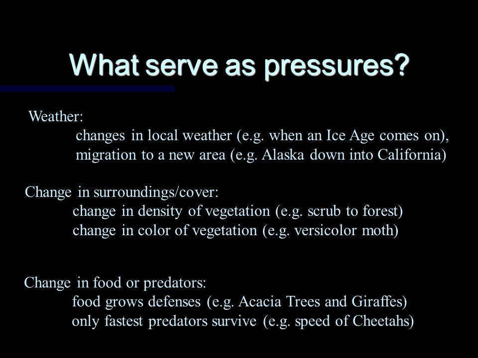 What serve as pressures.Weather: changes in local weather (e.g.