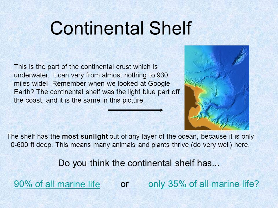 Continental Shelf This is the part of the continental crust which is underwater.