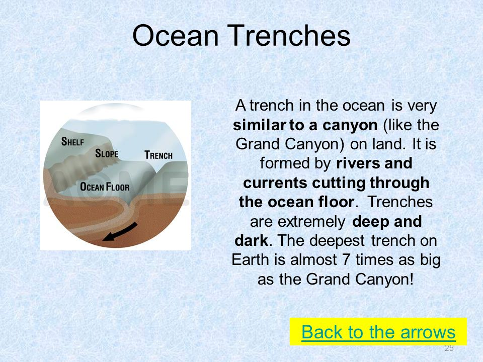 Ocean Trenches 25 Back to the arrows A trench in the ocean is very similar to a canyon (like the Grand Canyon) on land.