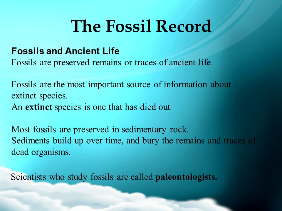 The Fossil Record Fossils and Ancient Life Fossils are preserved remains or traces of ancient life. Fossils are the most important source of informati