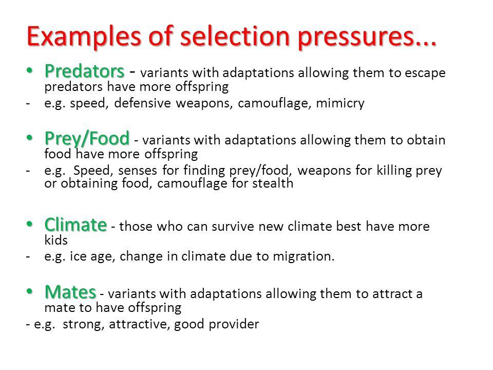 Examples of selection pressures...