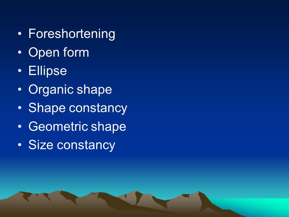 Foreshortening Open form Ellipse Organic shape Shape constancy Geometric shape Size constancy