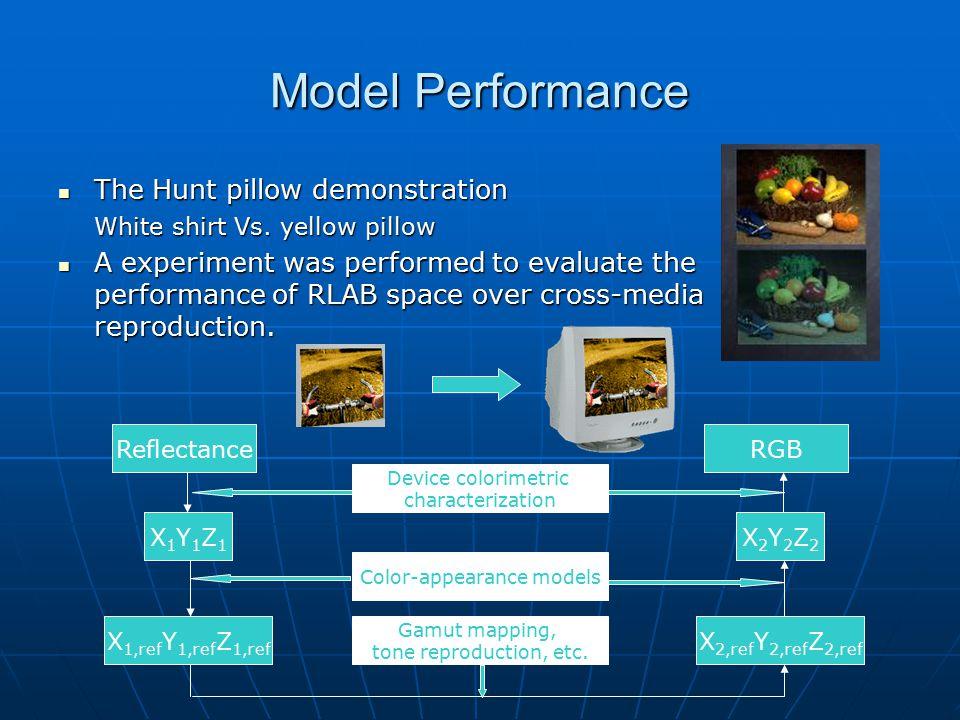 Model Performance The Hunt pillow demonstration The Hunt pillow demonstration White shirt Vs. yellow pillow White shirt Vs. yellow pillow A experiment