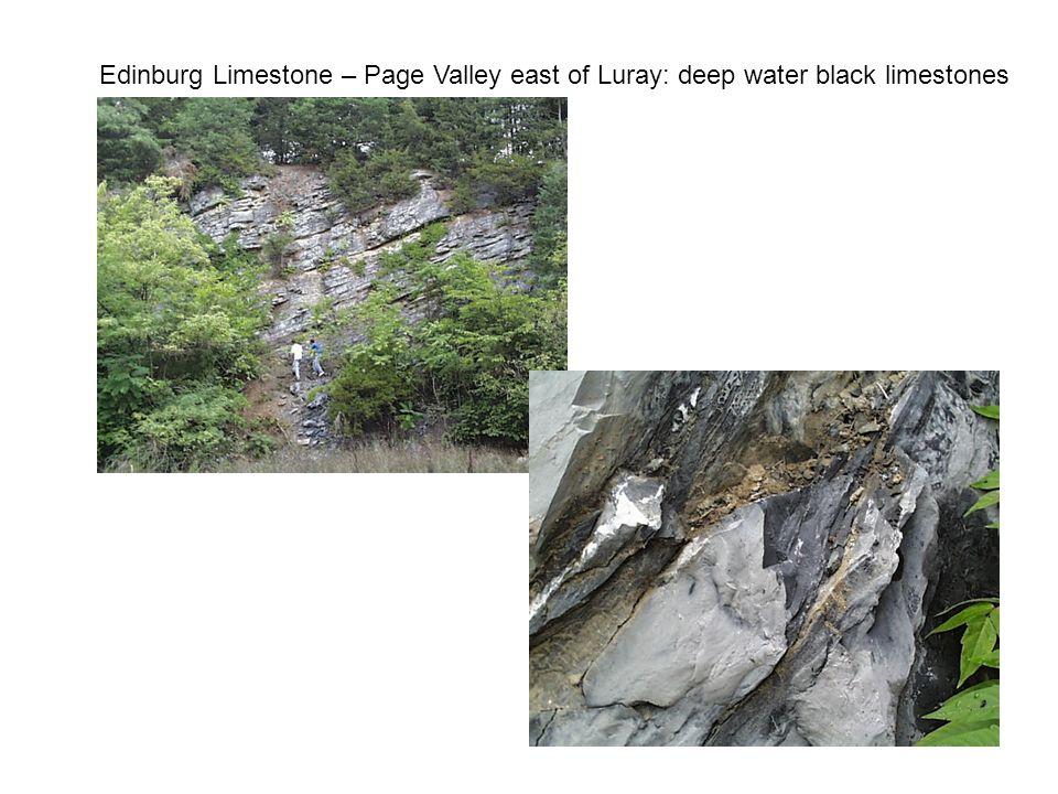 Edinburg Limestone – Page Valley east of Luray: deep water black limestones
