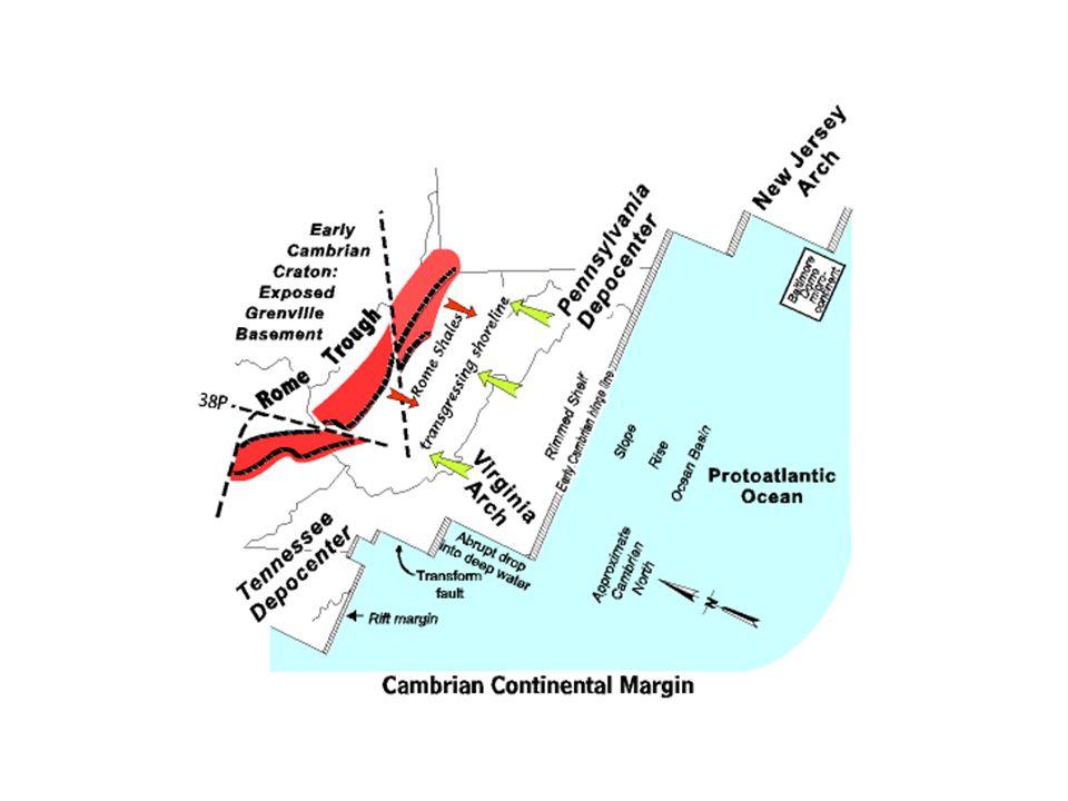 http://www.kgs.ukans.edu/Publications/Bulletins/227/gifs/coal_swamp.gif http://www.ucmp.berkeley.edu/carboniferous/carboniferous.html