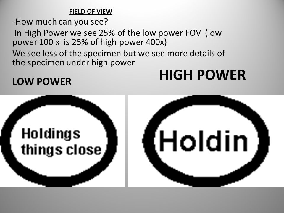 HIGH POWER FIELD OF VIEW -How much can you see.