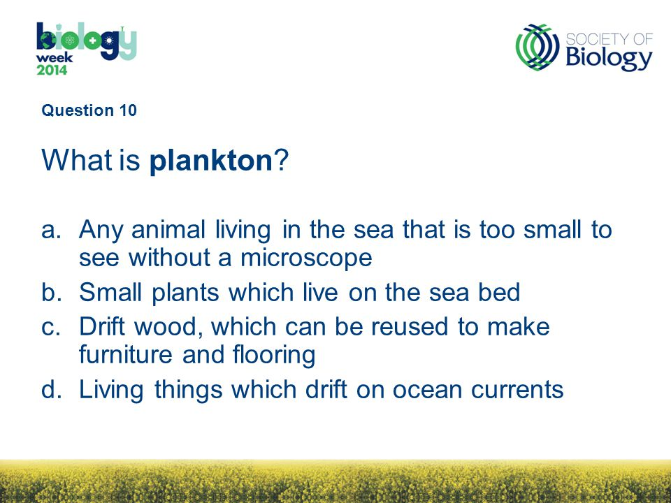 Question 10 What is plankton.