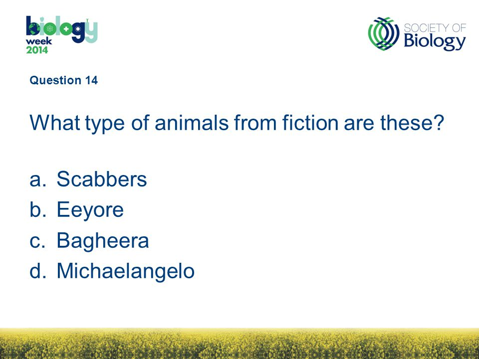 Question 14 What type of animals from fiction are these.