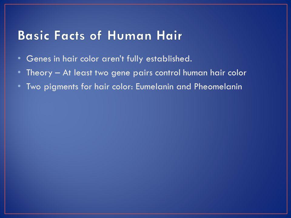 Genes in hair color aren't fully established.