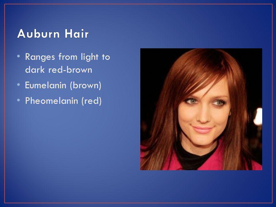 Ranges from light to dark red-brown Eumelanin (brown) Pheomelanin (red)