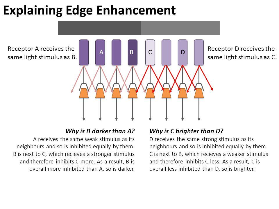 Explaining Edge Enhancement ABCD Why is B darker than A.