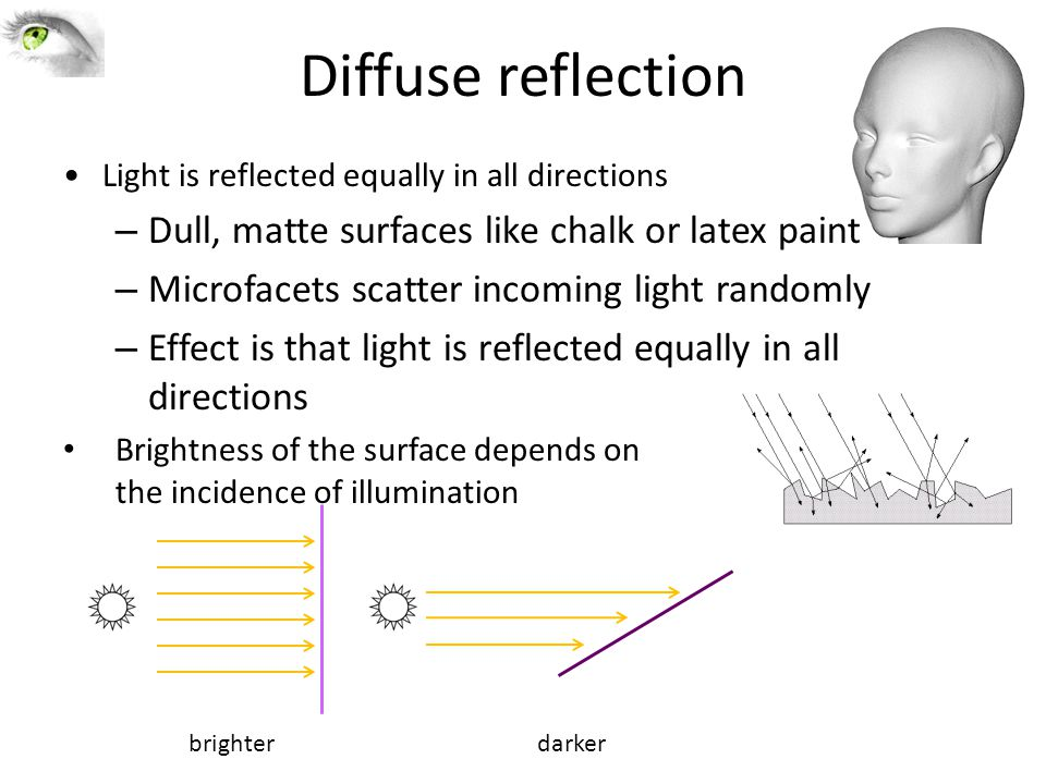 Diffuse reflection Light is reflected equally in all directions – Dull, matte surfaces like chalk or latex paint – Microfacets scatter incoming light