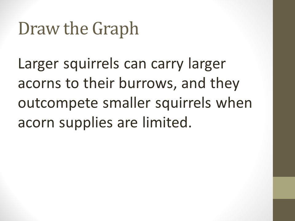 Draw the Graph Larger squirrels can carry larger acorns to their burrows, and they outcompete smaller squirrels when acorn supplies are limited.