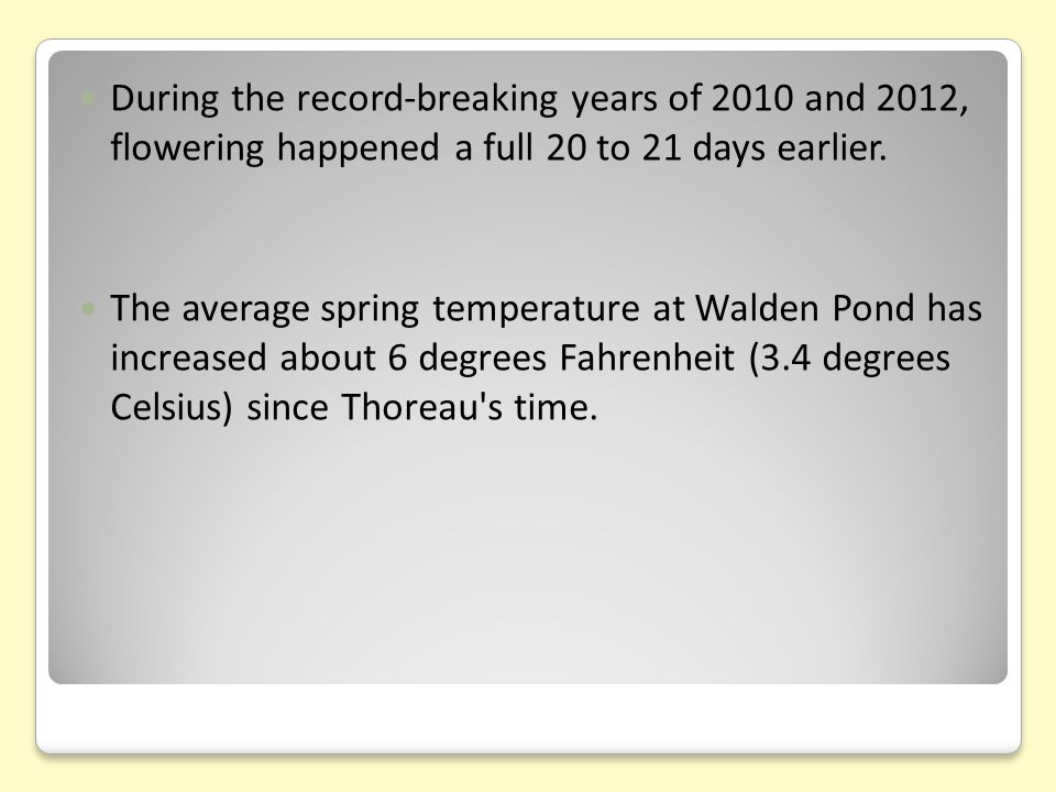During the record-breaking years of 2010 and 2012, flowering happened a full 20 to 21 days earlier. The average spring temperature at Walden Pond has