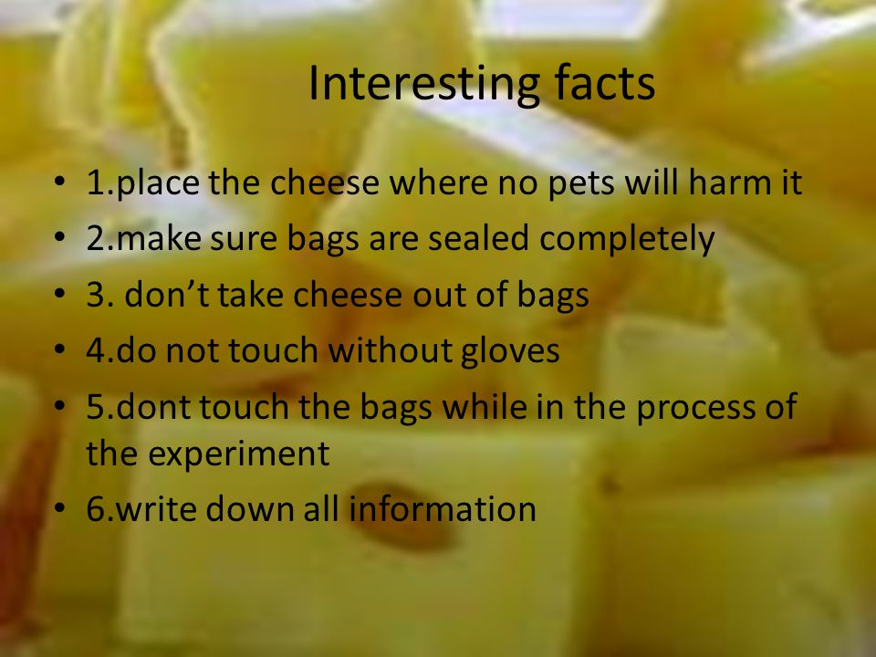 Interesting facts 1.place the cheese where no pets will harm it 2.make sure bags are sealed completely 3.