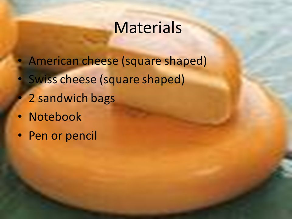 Materials American cheese (square shaped) Swiss cheese (square shaped) 2 sandwich bags Notebook Pen or pencil