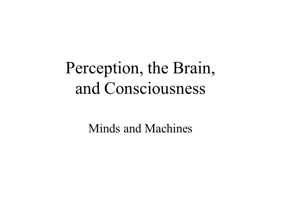 Perception, the Brain, and Consciousness Minds and Machines
