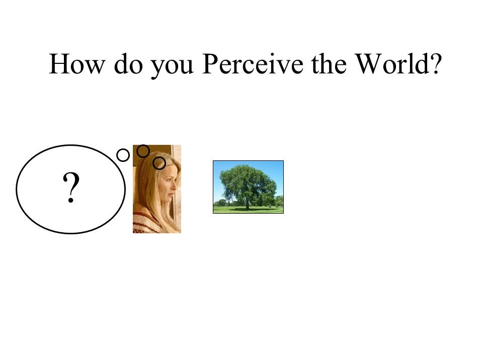 How do you Perceive the World
