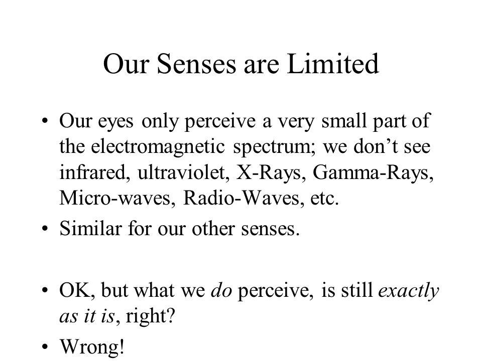 Summary: Perception is Constructive.