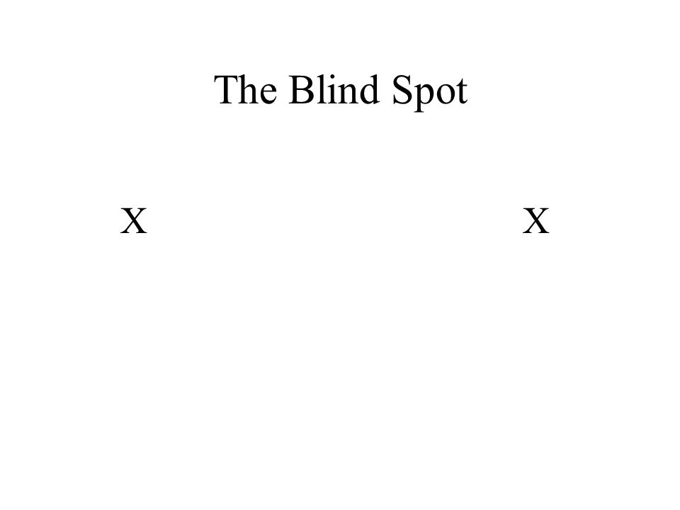XX The Blind Spot