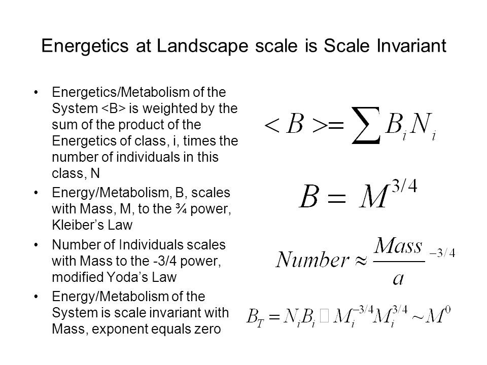 Energetics at Landscape scale is Scale Invariant Energetics/Metabolism of the System is weighted by the sum of the product of the Energetics of class, i, times the number of individuals in this class, N Energy/Metabolism, B, scales with Mass, M, to the ¾ power, Kleiber's Law Number of Individuals scales with Mass to the -3/4 power, modified Yoda's Law Energy/Metabolism of the System is scale invariant with Mass, exponent equals zero