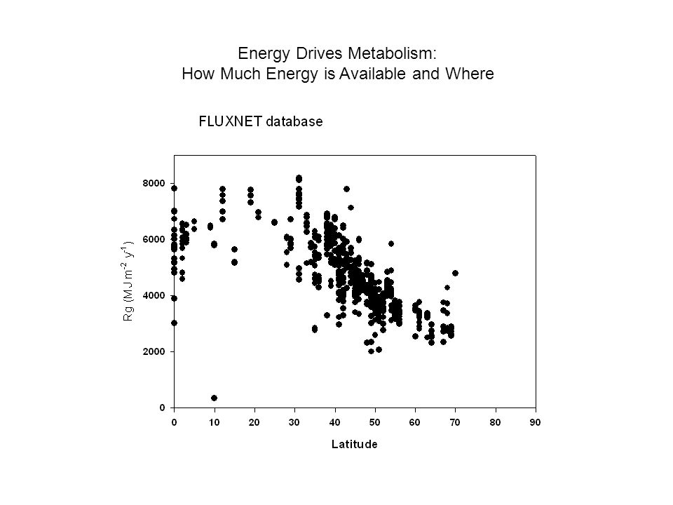 Energy Drives Metabolism: How Much Energy is Available and Where