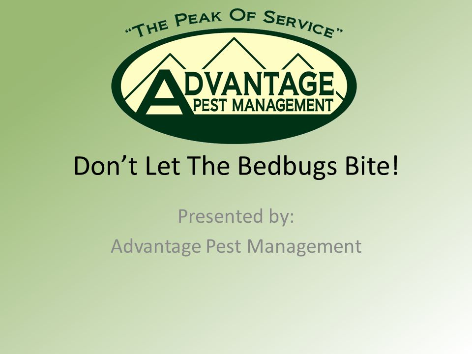 Don't Let The Bedbugs Bite! Presented by: Advantage Pest Management