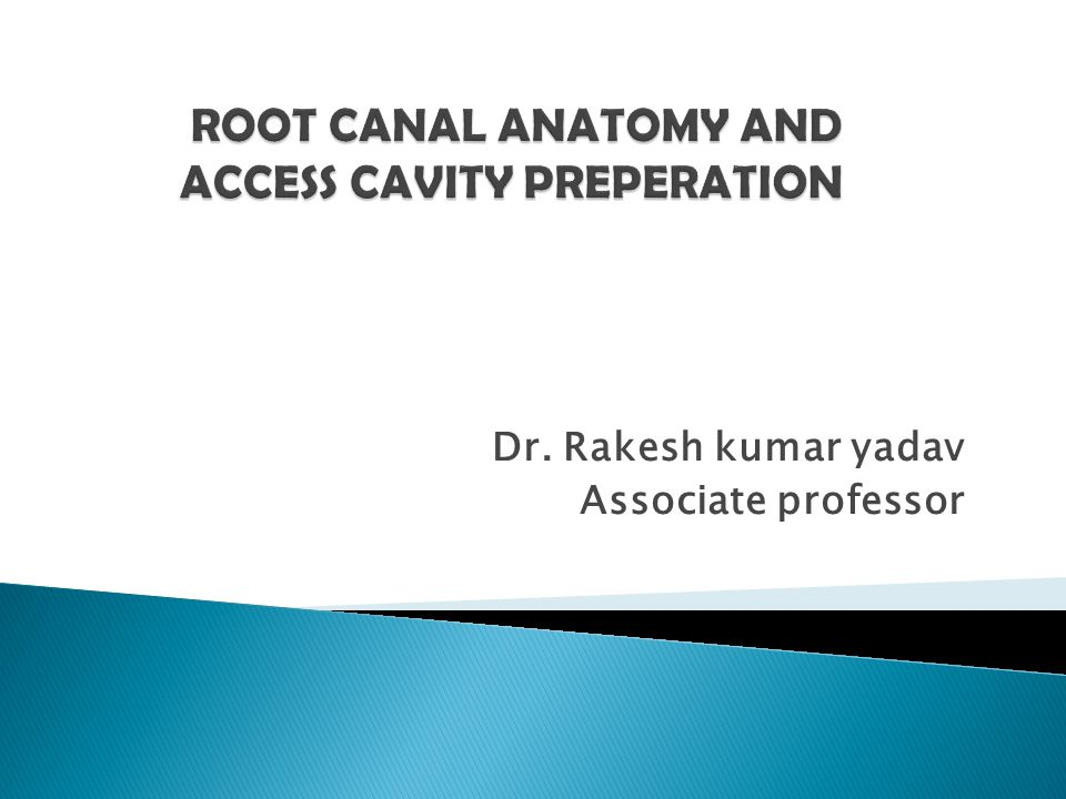 Dr. Rakesh kumar yadav Associate professor