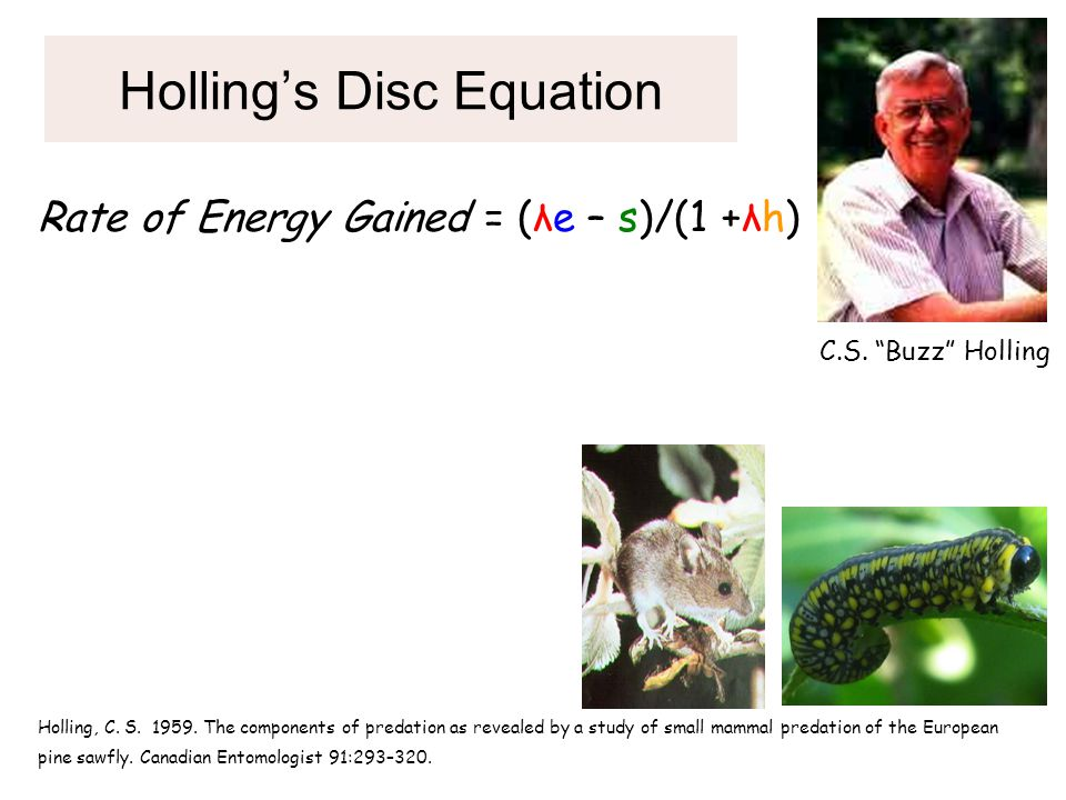 "Holling's Disc Equation C.S. ""Buzz"" Holling Holling, C. S. 1959. The components of predation as revealed by a study of small mammal predation of the E"