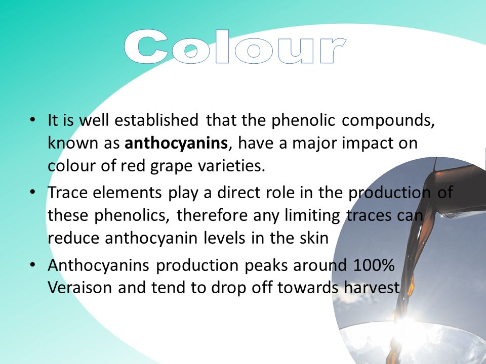 It is well established that the phenolic compounds, known as anthocyanins, have a major impact on colour of red grape varieties.