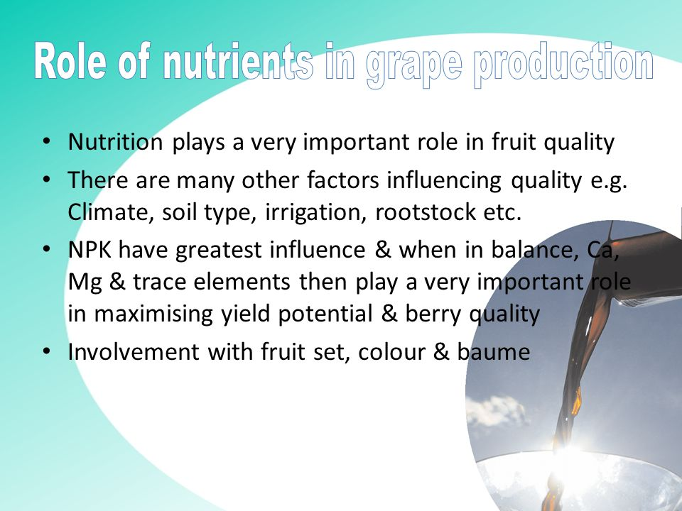 Nutrition plays a very important role in fruit quality There are many other factors influencing quality e.g.