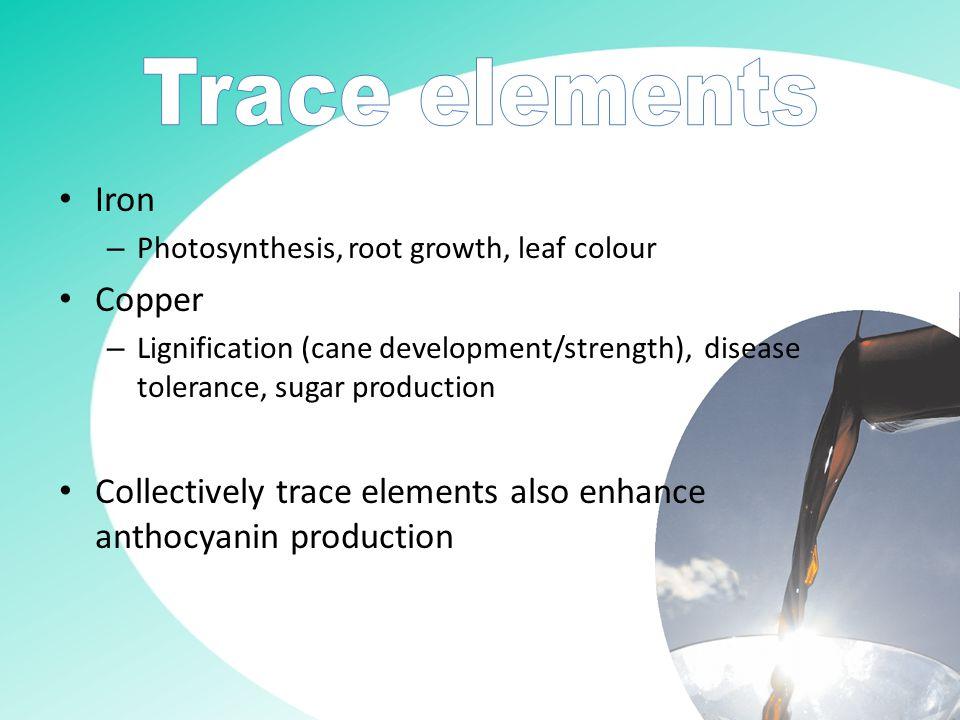 Calcium, Zinc, Boron & Molybdenum Environmental factors also influence flowering