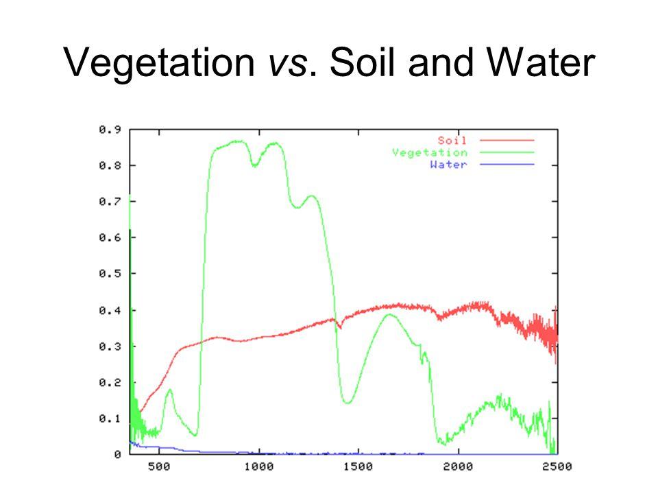 Vegetation vs. Soil and Water