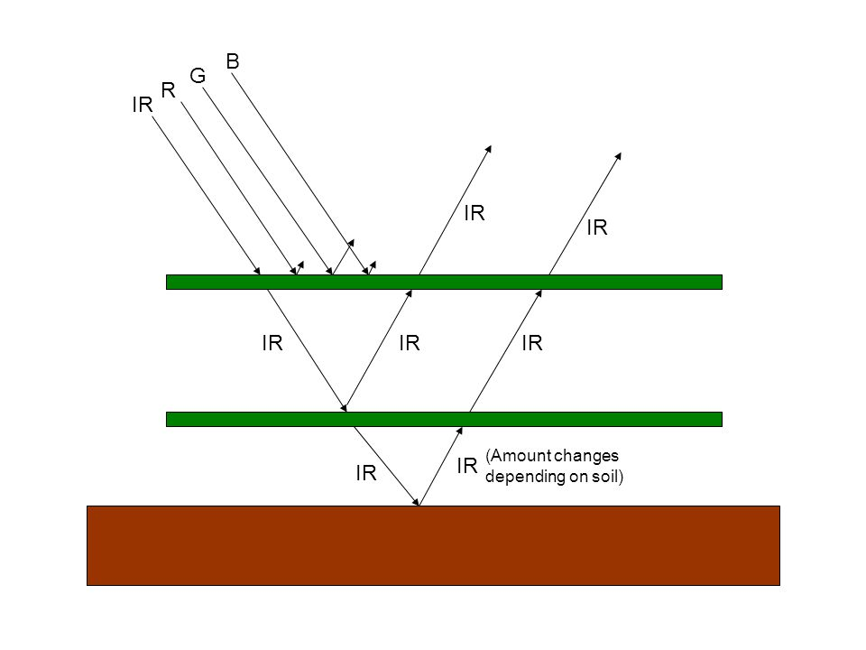 IR G R B (Amount changes depending on soil)