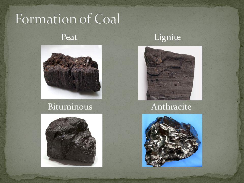 Peat Lignite Bituminous Anthracite