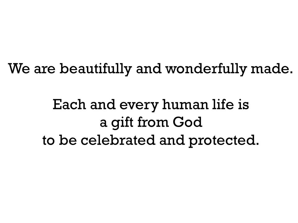 We are beautifully and wonderfully made. Each and every human life is a gift from God to be celebrated and protected.