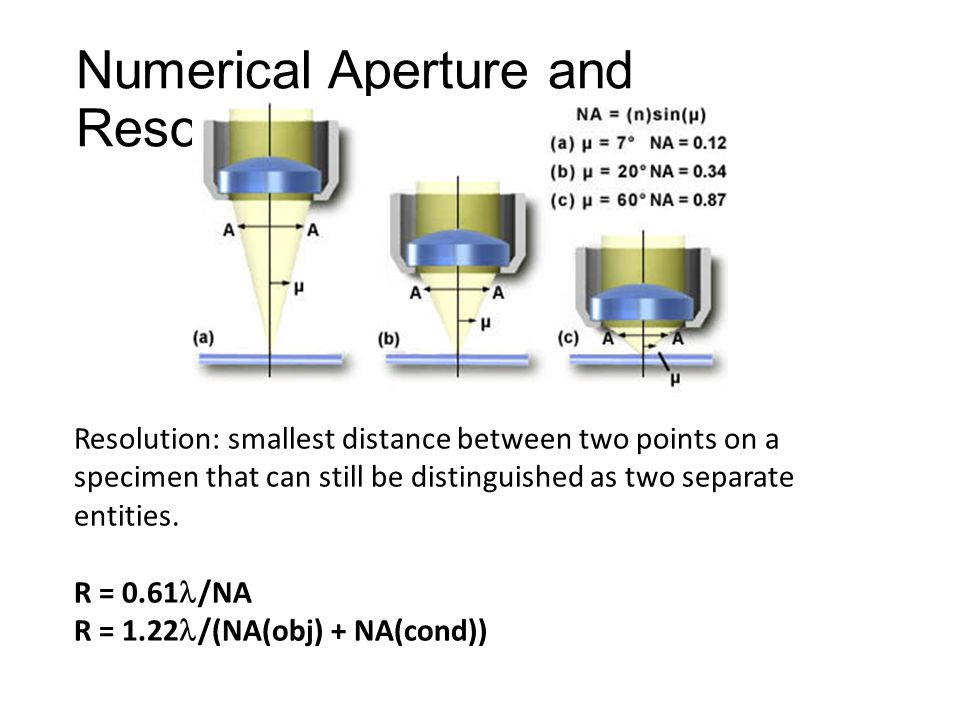 Numerical Aperture and Resolution Resolution: smallest distance between two points on a specimen that can still be distinguished as two separate entities.