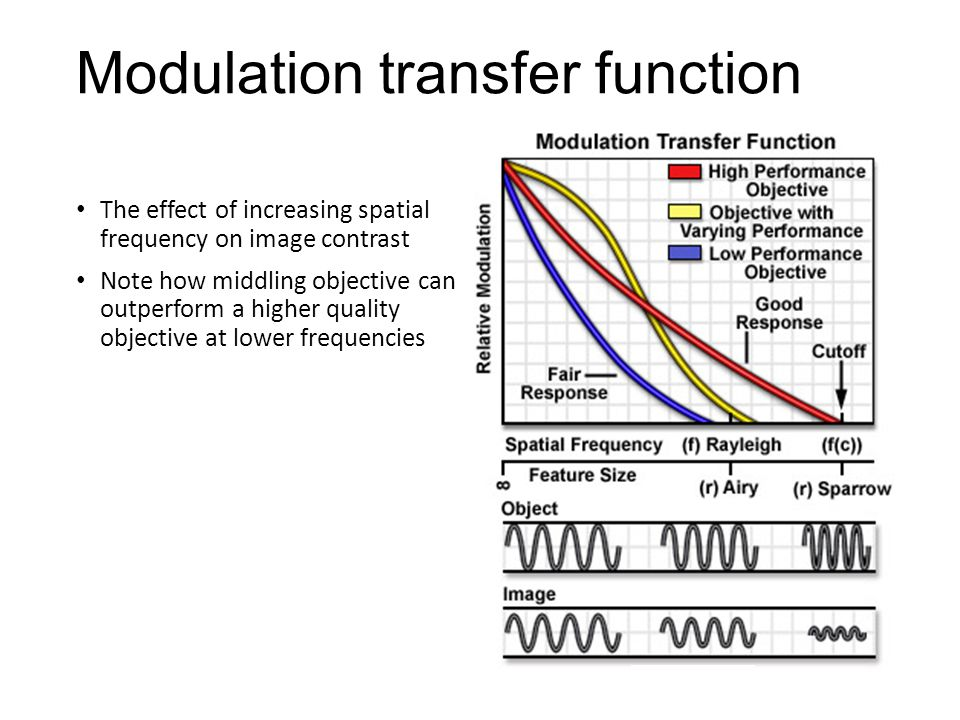 Modulation transfer function The effect of increasing spatial frequency on image contrast Note how middling objective can outperform a higher quality objective at lower frequencies