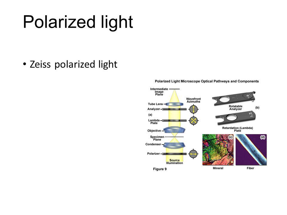 Polarized light Zeiss polarized light