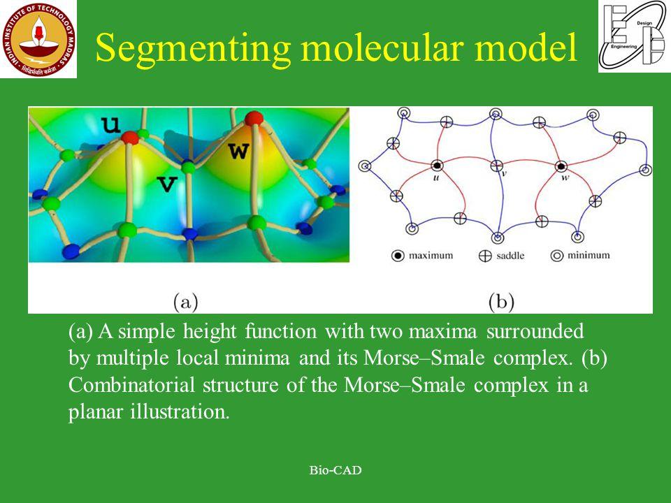 Segmenting molecular model Bio-CAD (a) A simple height function with two maxima surrounded by multiple local minima and its Morse–Smale complex.