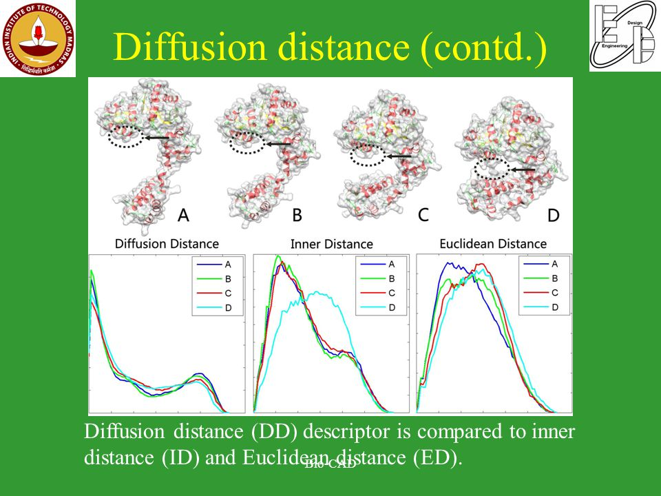 Diffusion distance (contd.) Bio-CAD Diffusion distance (DD) descriptor is compared to inner distance (ID) and Euclidean distance (ED).