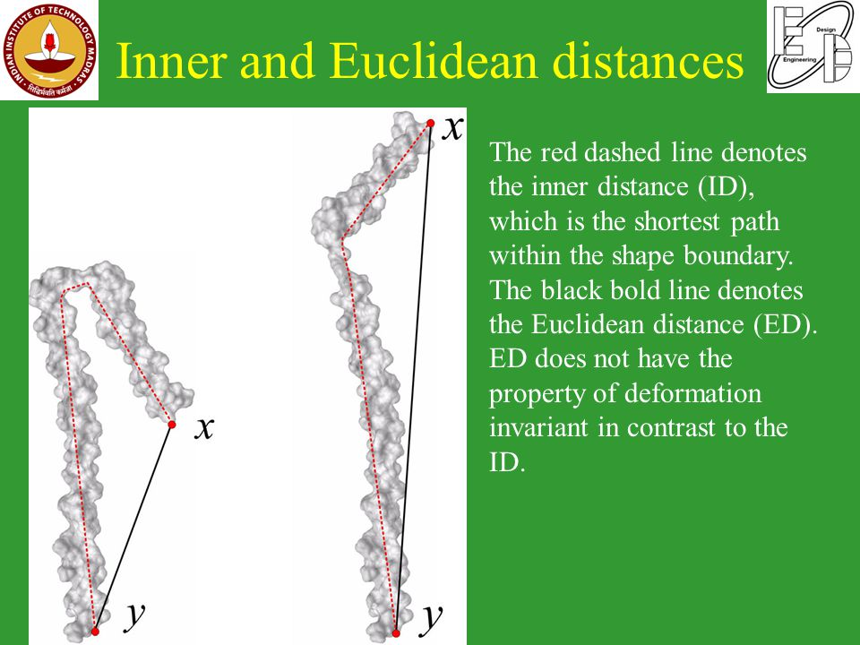 Inner and Euclidean distances Bio-CAD The red dashed line denotes the inner distance (ID), which is the shortest path within the shape boundary.